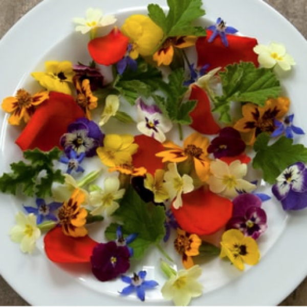 Buy edible flowers from Maddocks Farm Organics. Buy unsprayed Flowers.