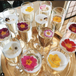 Buy edible flowers for Cocktails from Maddocks Farm Organics