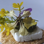 Buy rocket flowers from Maddocks Farm Organics. Buy edible flowers. Rocket flowers.