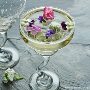 Edible Flowers for Cocktails, Drinks and Icecubes